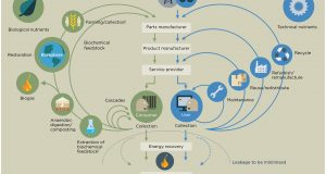 The illustration of the circular economy concept. Source: Ellen MacArthur Foundation (2014).